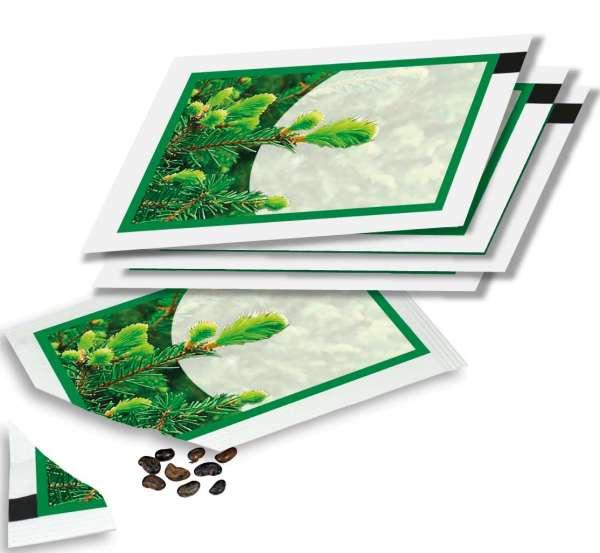 Samentütchen Fichte 80 x 55 mm