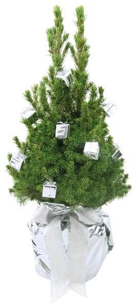 Geschenke-Bäumchen 35-45 cm