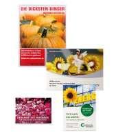 Standardpapier - Sommerblume