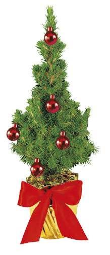 Festliches Bäumchen rot 20-30 cm