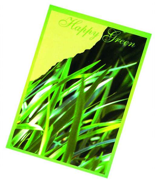 Samentütchen Happy Green 82 x 114 mm