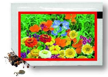 Samentütchen bunte Blumenmischung 80 x 55 mm